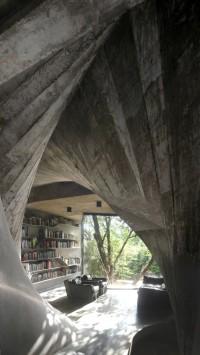 nietypowa domowa biblioteka