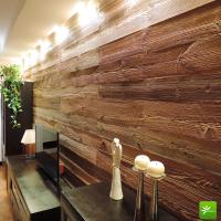 Ścianka w salonie w starym drewnie.