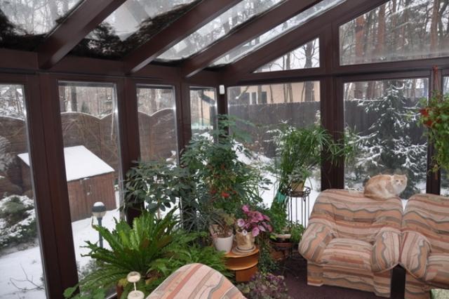 ogrod-zimowy (3)
